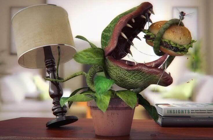 etobur bitki neden et yer foto